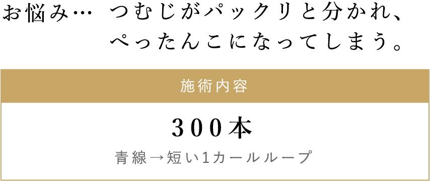 施術内容/300本