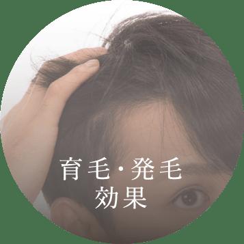 育毛・発毛効果